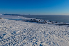 Stentved-Photography-20190209-_19A1728-1-kap-Hope
